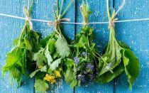 Эффективное лечение плантарного фасциита: компрессы из растений, продуктов питания и подручных средств